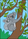 Cartoon animals. Mother koala with her little cute baby. Royalty Free Stock Photo