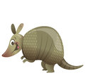 Cartoon armadillo animal happy smiling Stock Images