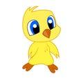 Cartoon baby chicken Easter chick bird Royalty Free Stock Photo