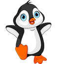 Cartoon baby penguin illustration of dancing Royalty Free Stock Images