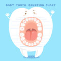 Cartoon baby tooth eruption chart