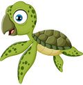 Cartoon baby turtle swimming illustration of Royalty Free Stock Images