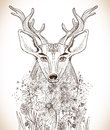 Cartoon background with deer and flowers hand drawn beautiful illustration Stock Images