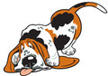 Cartoon basset Stock Image
