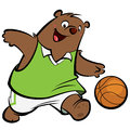 Cartoon bear athletic suit dribbling playing basket ball Stock Image