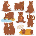 Cartoon bear character different pose vector set.