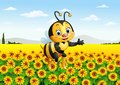 Cartoon bee in the sunflower field Royalty Free Stock Photo