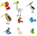 Cartoon bird icon Stock Photo
