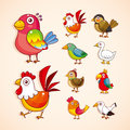 Cartoon bird icon set Stock Image