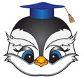 Cartoon bird in a square academic cap vector birds head Royalty Free Stock Image