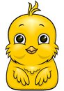 Cartoon bird vector yellow little with big eyes with funny expression Stock Photos