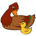 Cartoon birds for kids mother duck with her cute duckling little they smile Stock Photography