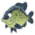 Cartoon black crappie fish Royalty Free Stock Photo