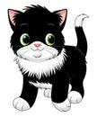 Cartoon black and white kitten