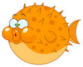 Cartoon blowfish Royalty Free Stock Photo