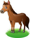 Cartoon brown horse on the grass