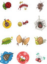 Cartoon bug icon Royalty Free Stock Images