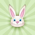 Cartoon bunny head on green nice rabbit icon Royalty Free Stock Images