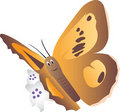 Cartoon butterfly Royalty Free Stock Image