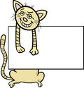 Cartoon cat with board or card Stock Photos