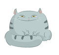 Cartoon cat vector image of smiling square Royalty Free Stock Image