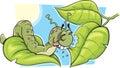 A Cartoon Caterpillar