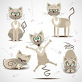 Cartoon cats in motion and emotion funny Stock Photography