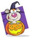 Cartoon character halloween mouse Stock Images