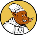 Cartoon chef wild boar pig hog Royalty Free Stock Image