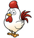 Cartoon chicken vector illustration of Stock Photography