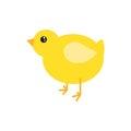 Cartoon chicken vector illustration.