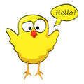 Cartoon chicken wings up yellow little bird with speech bubble Stock Photography