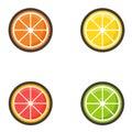 Cartoon citrus set