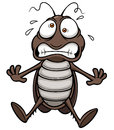 Cartoon cockroach vector illustration of Stock Photo