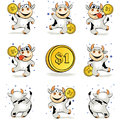 Cartoon crazy young cow with gold coin 1 dollar is happy and dan