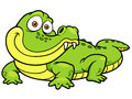 Cartoon crocodile vector illustration of Stock Photos