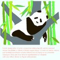 Cartoon cute panda is sleeping on tree, green bamboo, Lorem ipsum. Stock vector illustration for banner Royalty Free Stock Photo
