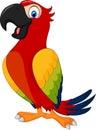 Cartoon cute parrot Royalty Free Stock Photo