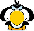Cartoon devious penguin a illustration of a little with a expression Stock Images