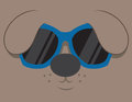 Cartoon dog head sunglasses Stock Photography