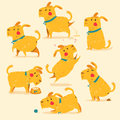 Cartoon Dog poses. Vector illustration. Isolaed