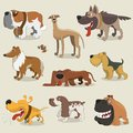 Cartoon dogs collection this is file of eps format Royalty Free Stock Photos