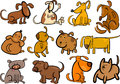 Cartoon dogs or puppies big set Royalty Free Stock Photography