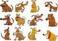 Cartoon dogs set Royalty Free Stock Photo