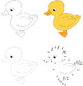 Cartoon duckling. Vector illustration. Dot to dot game for kids Royalty Free Stock Photo