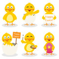 Cartoon easter cute chick set collection of six characters in different positions and expressions isolated on white background eps Stock Image