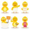 Cartoon Easter Cute Chick Set