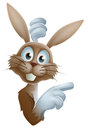 Cartoon easter rabbit pointing cute bunny peering around a sign and Royalty Free Stock Photos