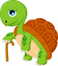 Cartoon elderly tortoise illustration of Royalty Free Stock Images