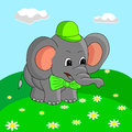Cartoon elephant collects flowers in the meadow, vector illustration.